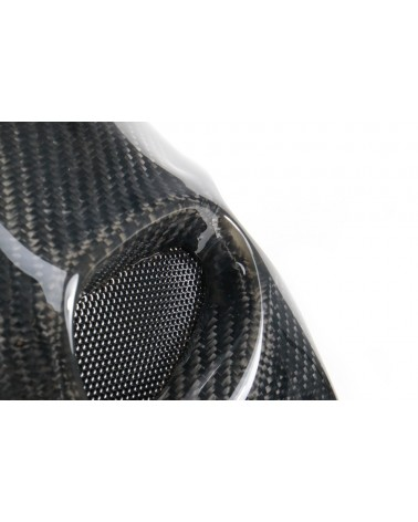 Carbon Ohrringe